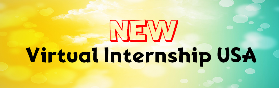 Virtual Internship USA
